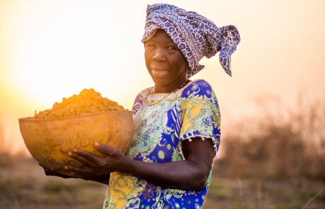 Le sommet des Nations Unies sur les systèmes alimentaires : une occasion manquée.